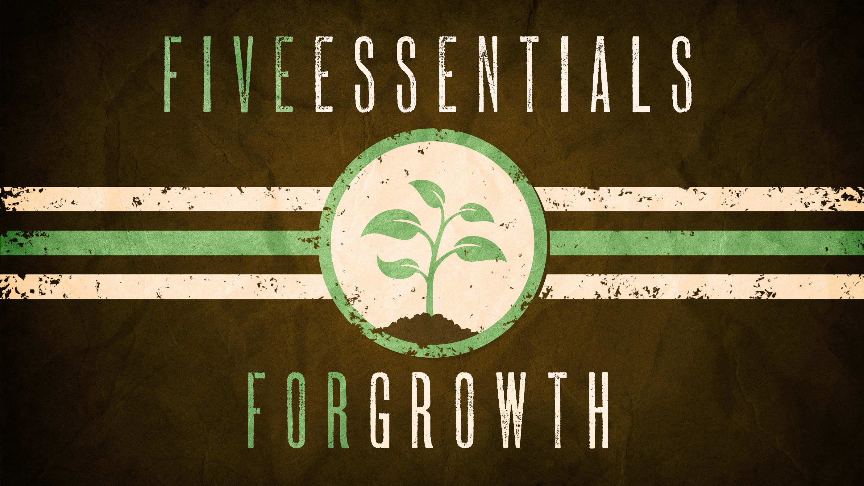 Essentials For Growth