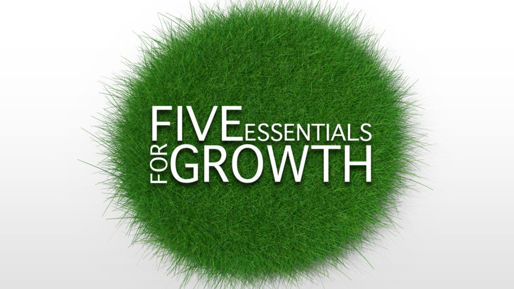 Five Essentials For Growth